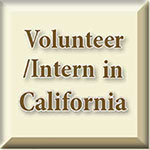 Volunteer/Intern in California